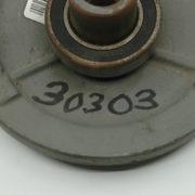 30303-1